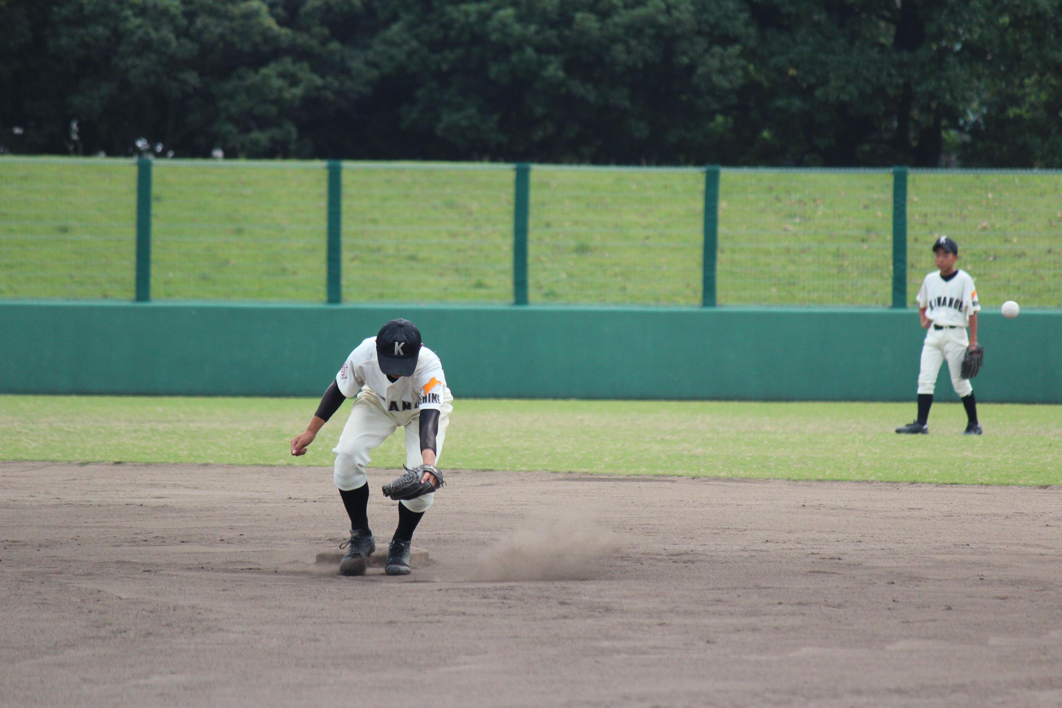 野球 (545)