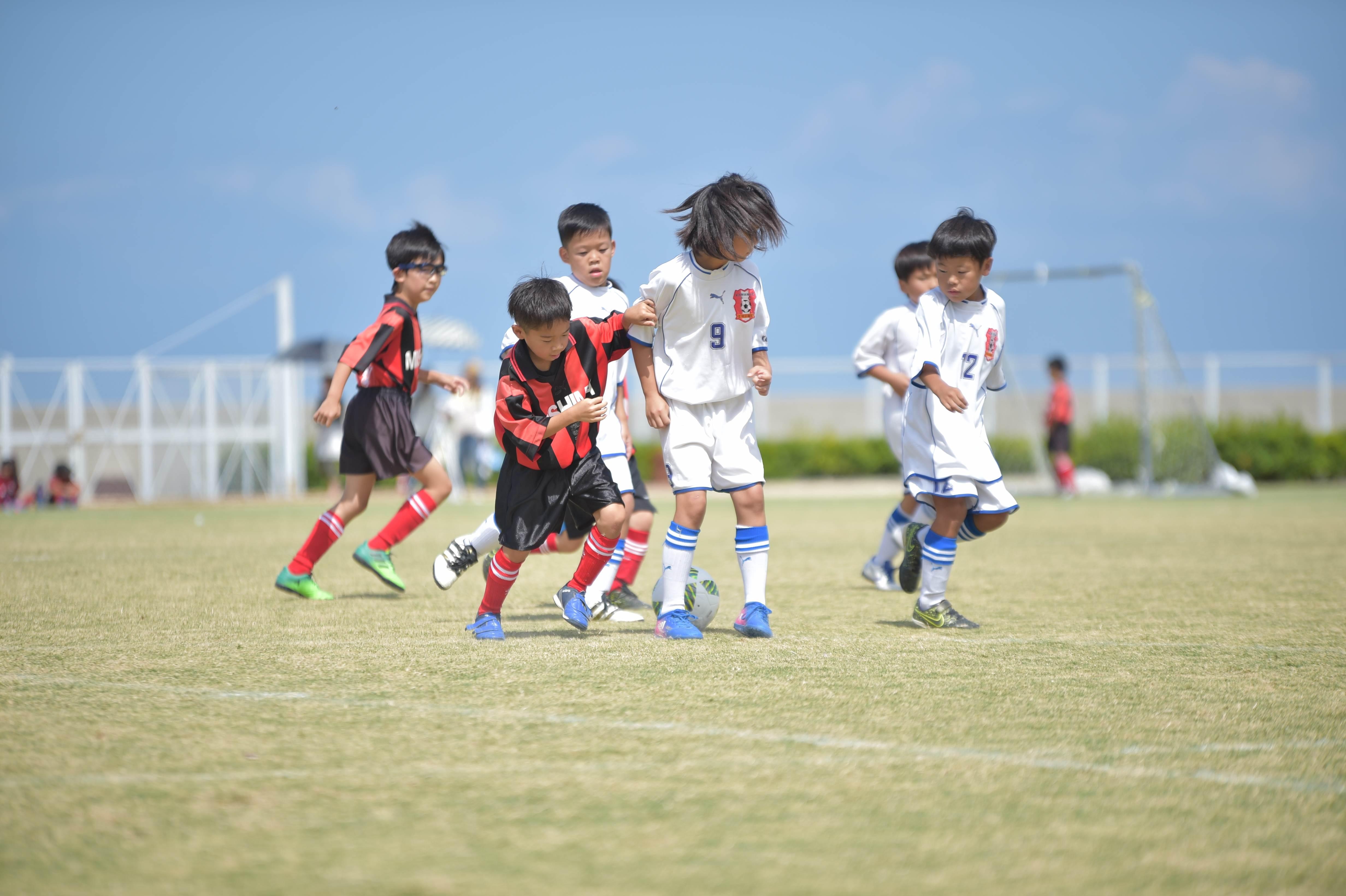 mini_soccer (316)