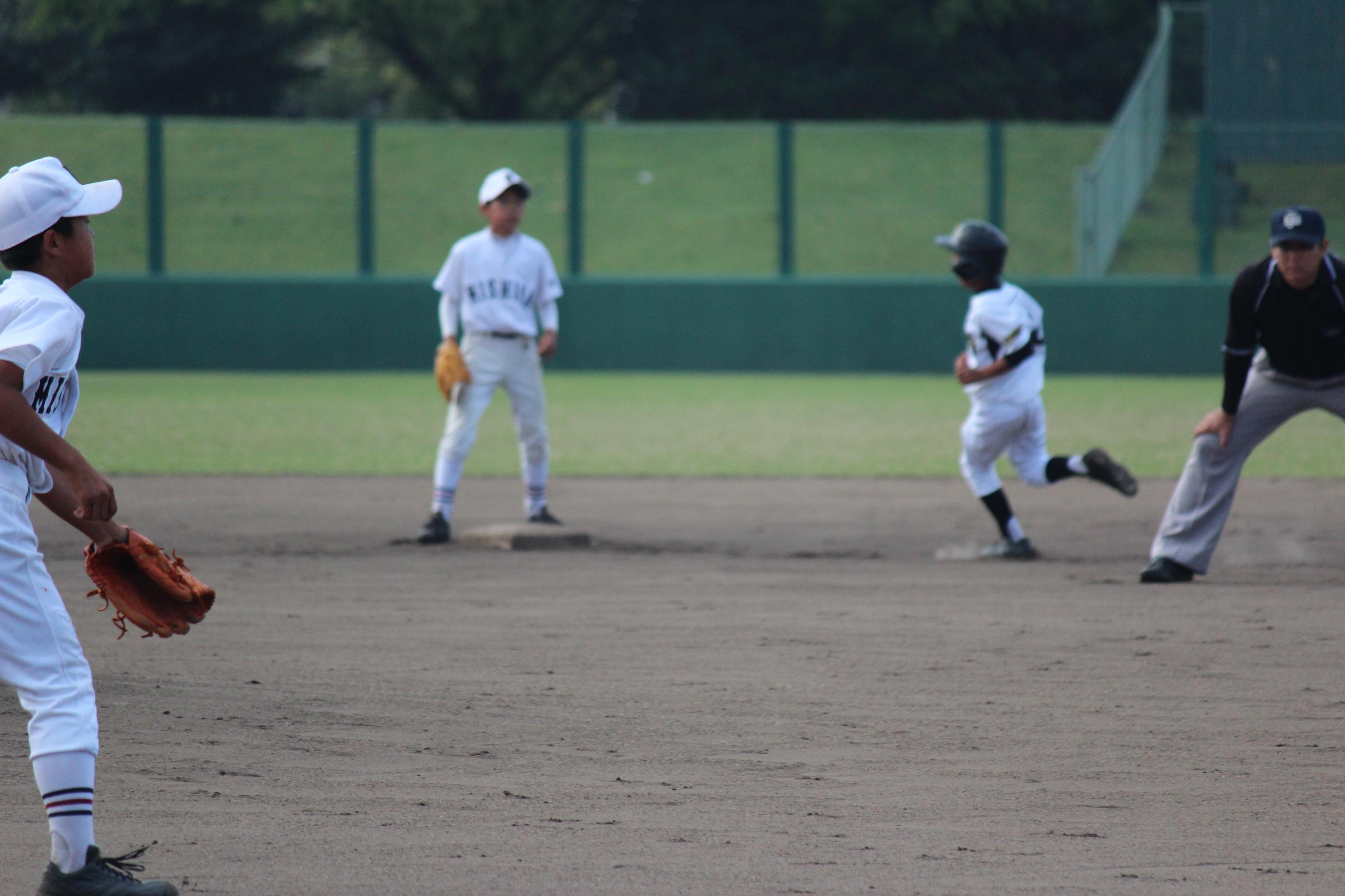 野球 (361)