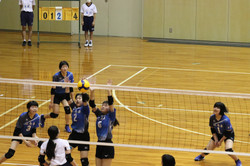 バレーボール (568)