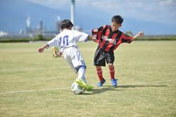 mini_soccer (332)