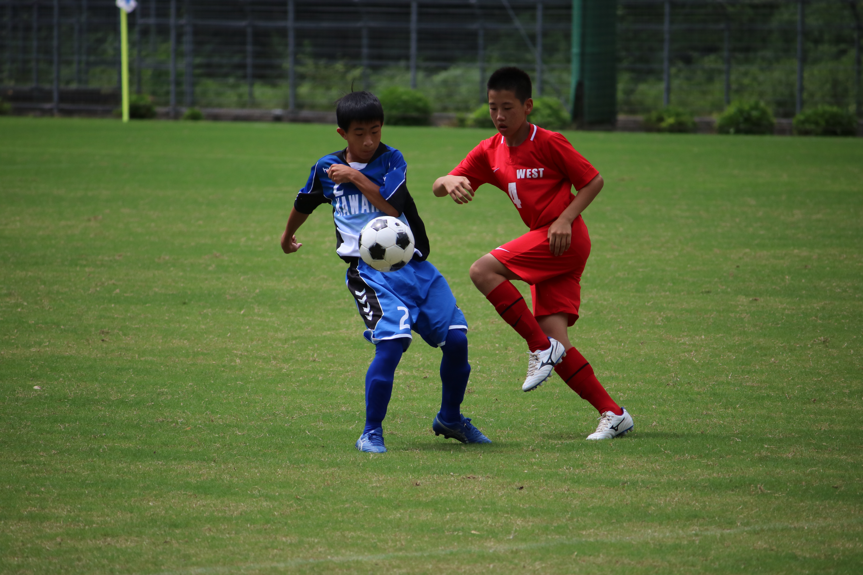 サッカー (490)