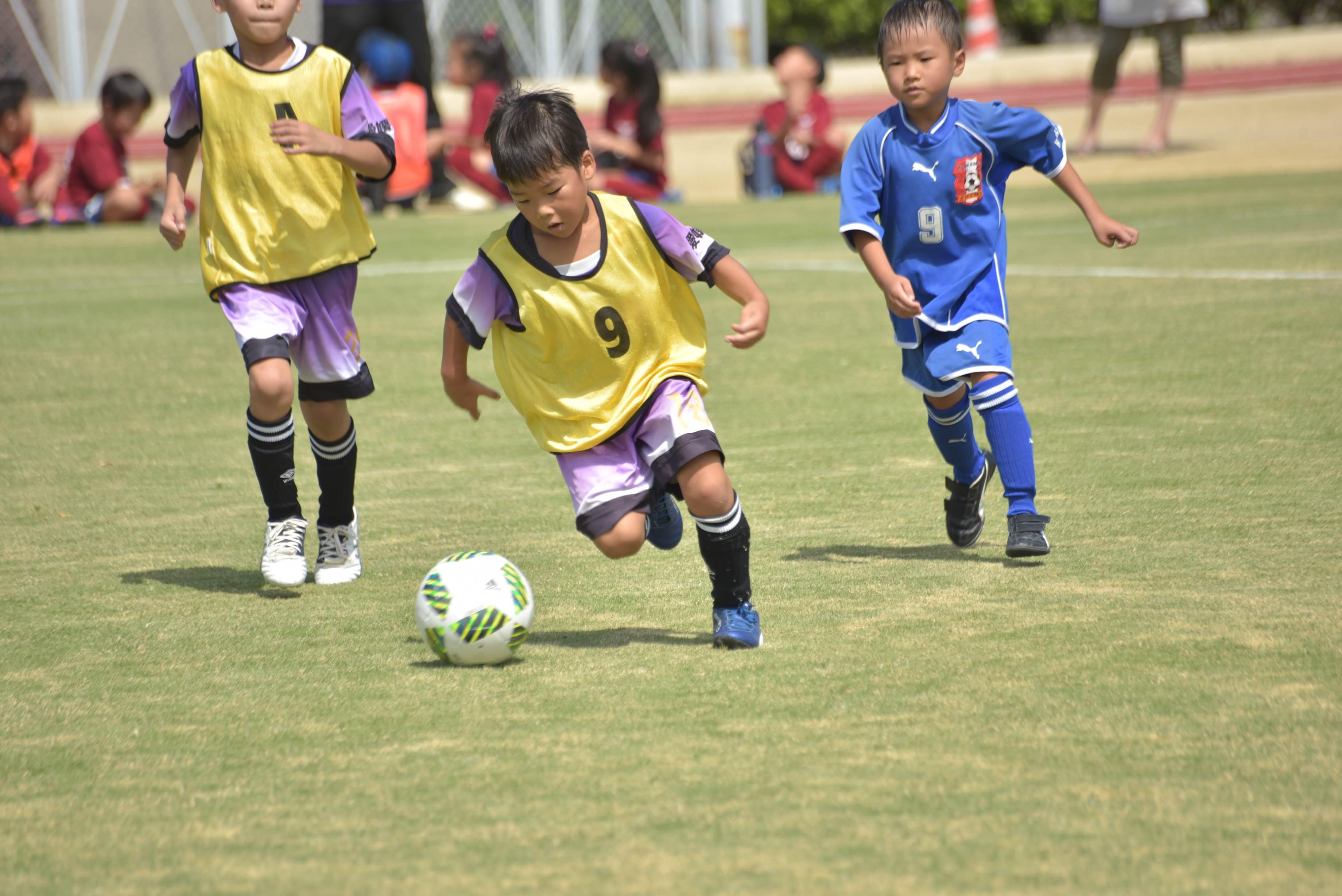 mini_soccer (608)