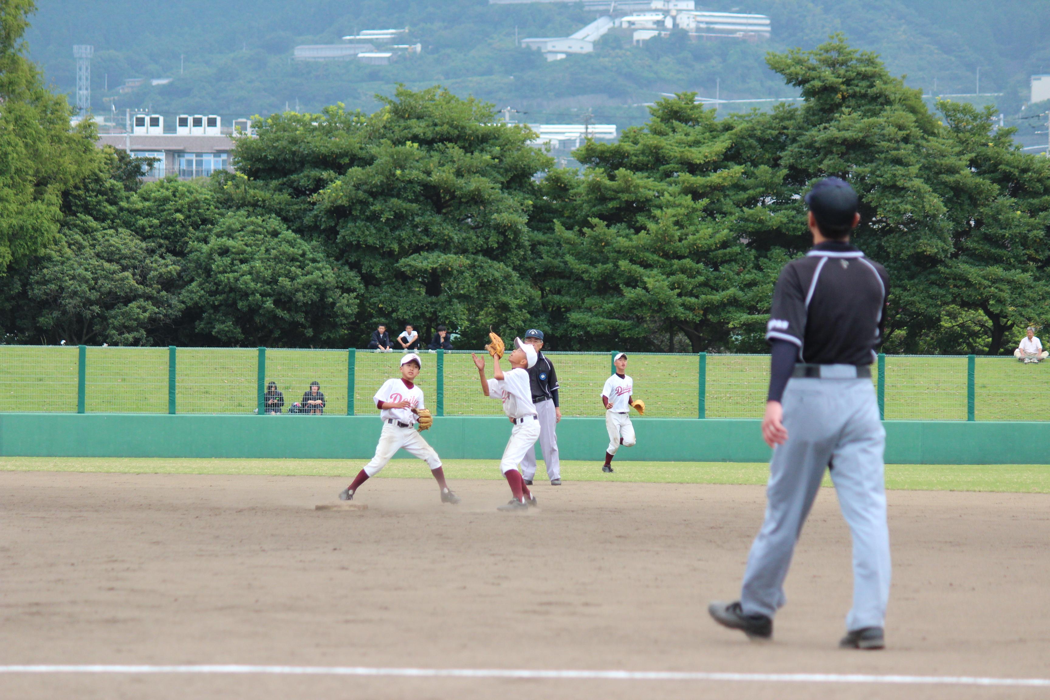 野球 (312)