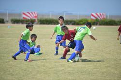 mini_soccer (435)