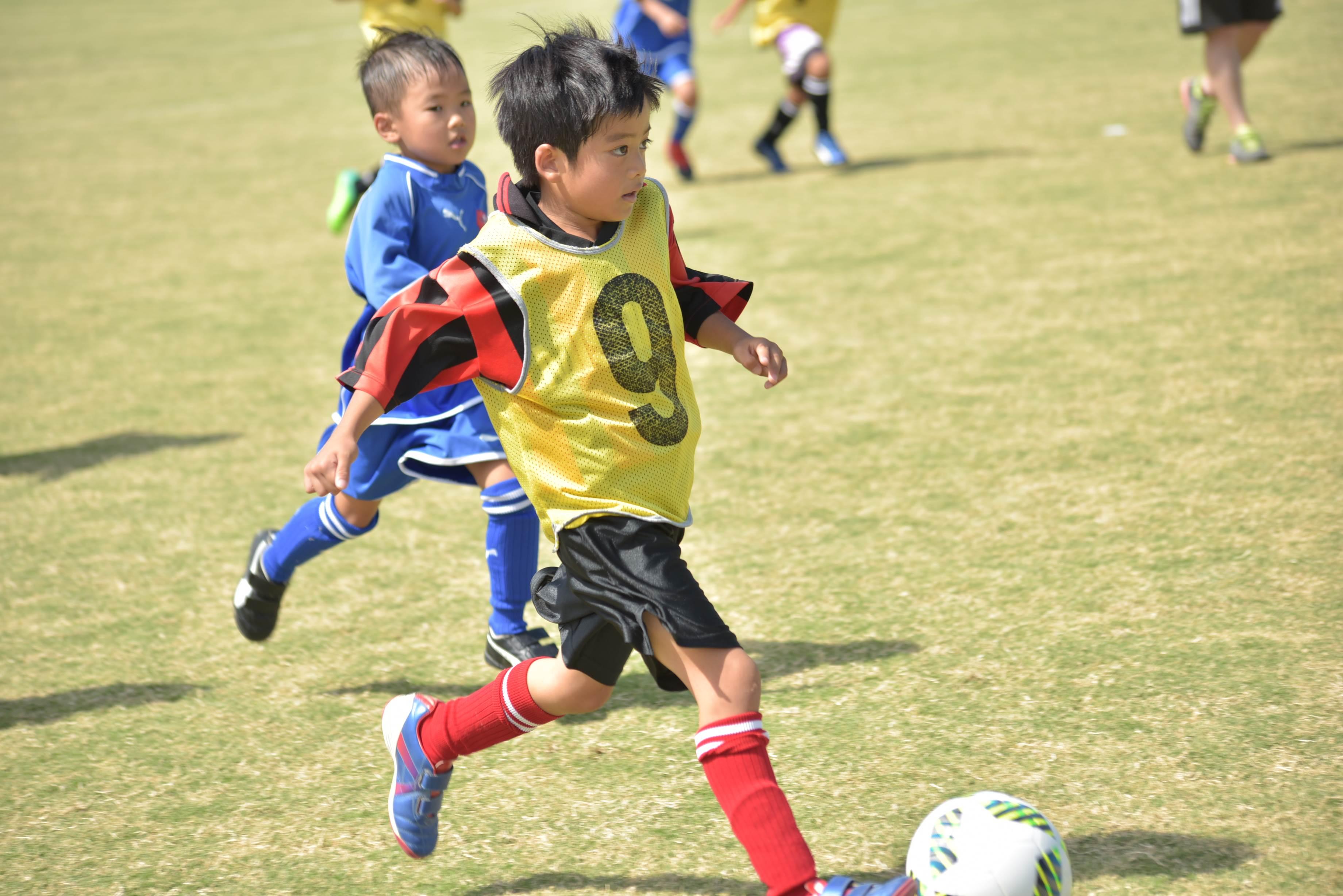 mini_soccer (619)