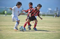 mini_soccer (385)