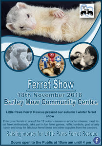 Flyer for Ferret Show November 18th at Barley Mow Community Hall