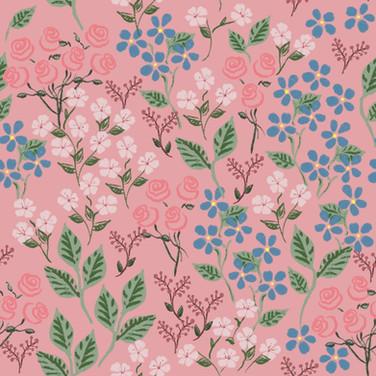 In the Fairy Garden in Rose