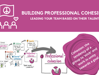 Building Professional Cohesion: A talent-based approach to leading your team