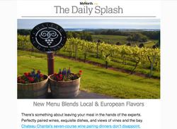 The Daily Splash