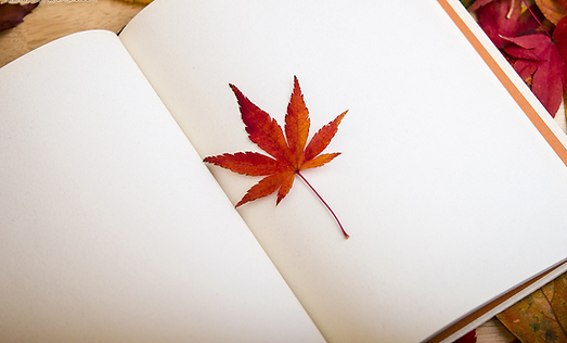 maple leaf in book.PNG