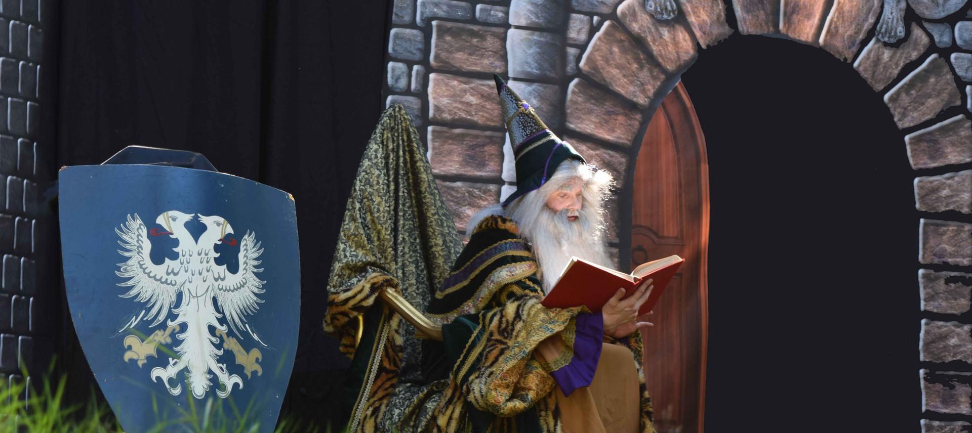 Sprookjestovenaar tovenaar tovenaarsshow