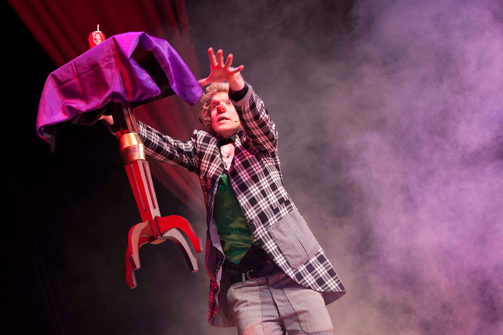 Kindershow goochelaar clown voorstelling