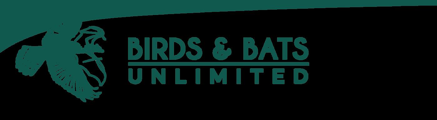 BIRDS & BATS web-banner-10-10-10.png
