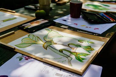 Botanisch illustreren_SM-44.jpg