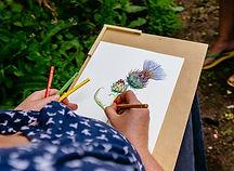 Botanisch illustreren-15-3.jpg