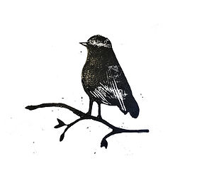 vogel lino IMG_8480.jpg