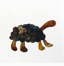 Schildpad-meer witjpg.jpg