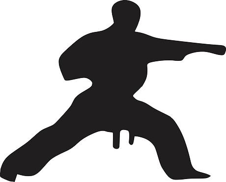 karate-312471_1280.png