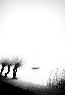 balance-Matthias-Stump-001
