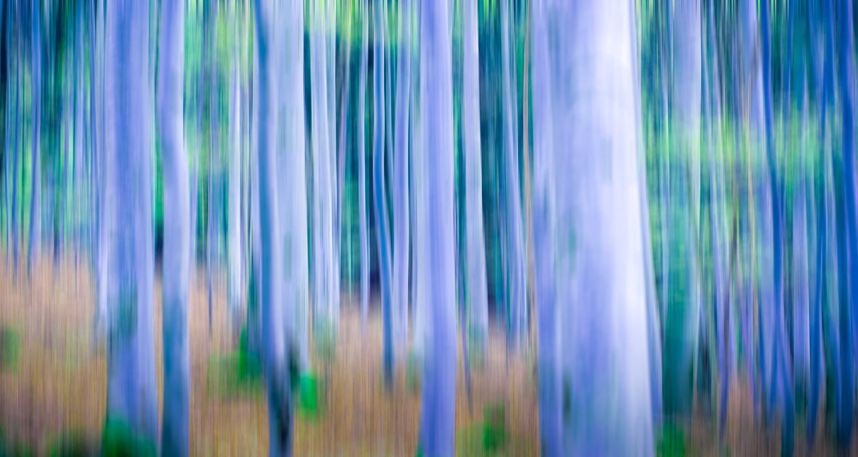 photoart-Matthias-Stump_001