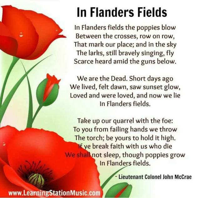 flanders fields.png