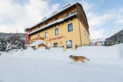 Winter Freinerhof (C) nixxipixx.com-10.j