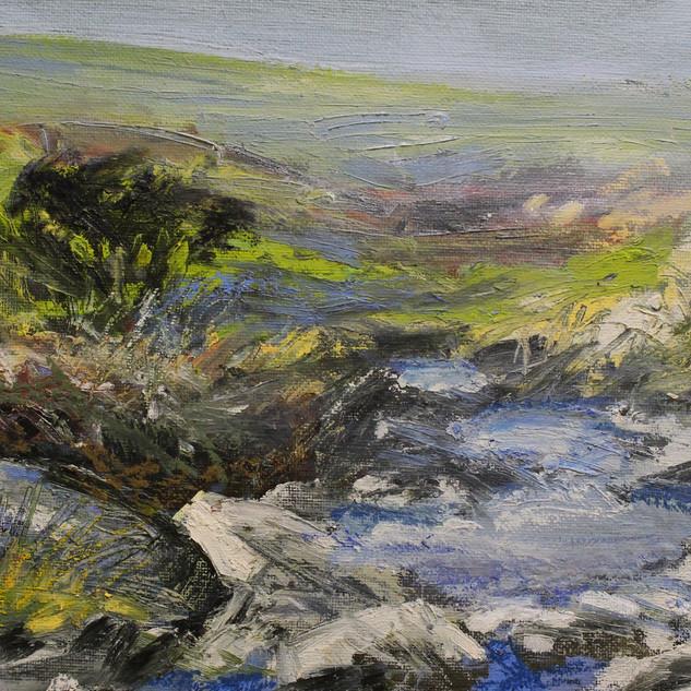 Dartmoor Spring. £100