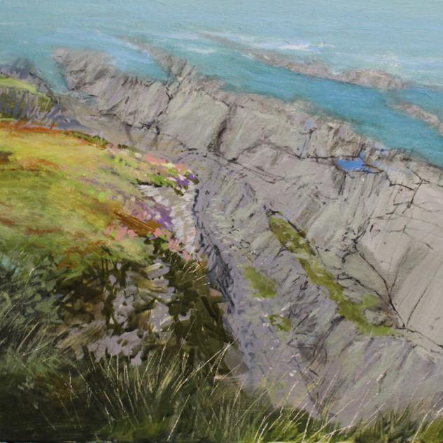 Clifftop at Bull Point. £150