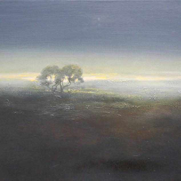 Early Light on Dartmoor. £180