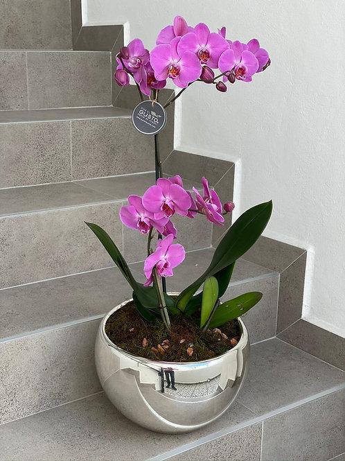 Orquídeas en espejo