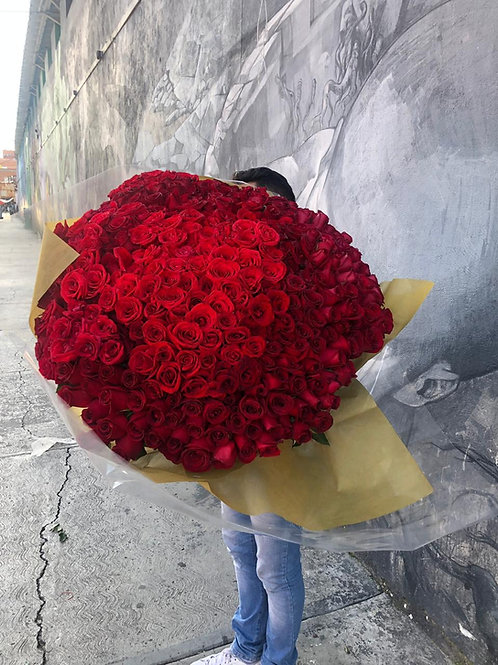 500 Rosas Rojas