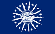 buffalo flag.png