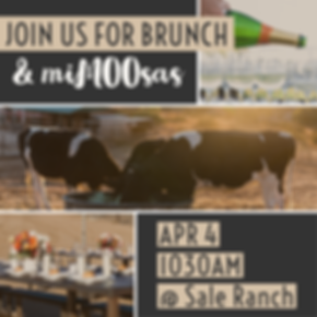 Brunch Graphic.png