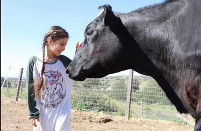 Girl cow.jpg