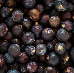 closeup-of-black-pepper-texture-PPGMF9S.