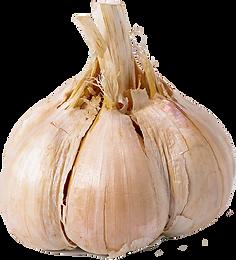 raw-garlic-RK29ZUJ.png