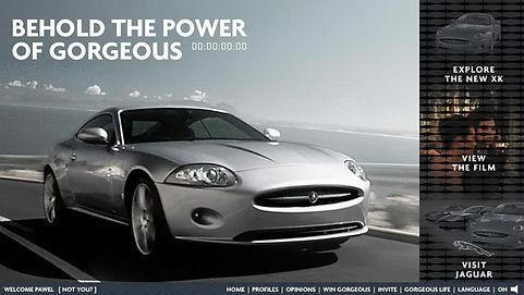 Jaguar-PawelSokalski-marketing