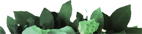 Leaves%2520Website_edited_edited.png