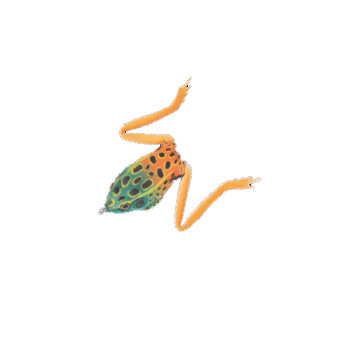 Stoxdal Real Frog 6,5cm Green/Orange
