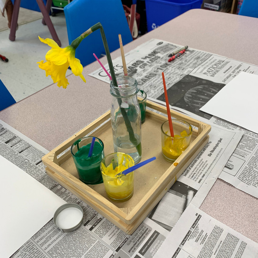 Spring provocation