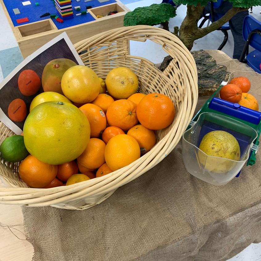 Weighing fruits