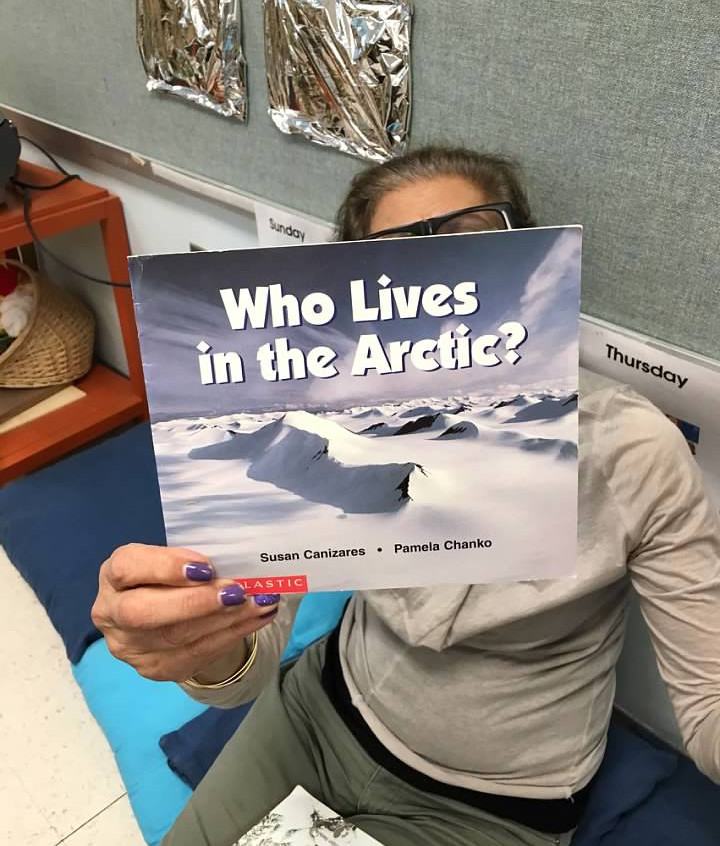 Learning about the Arctic bears
