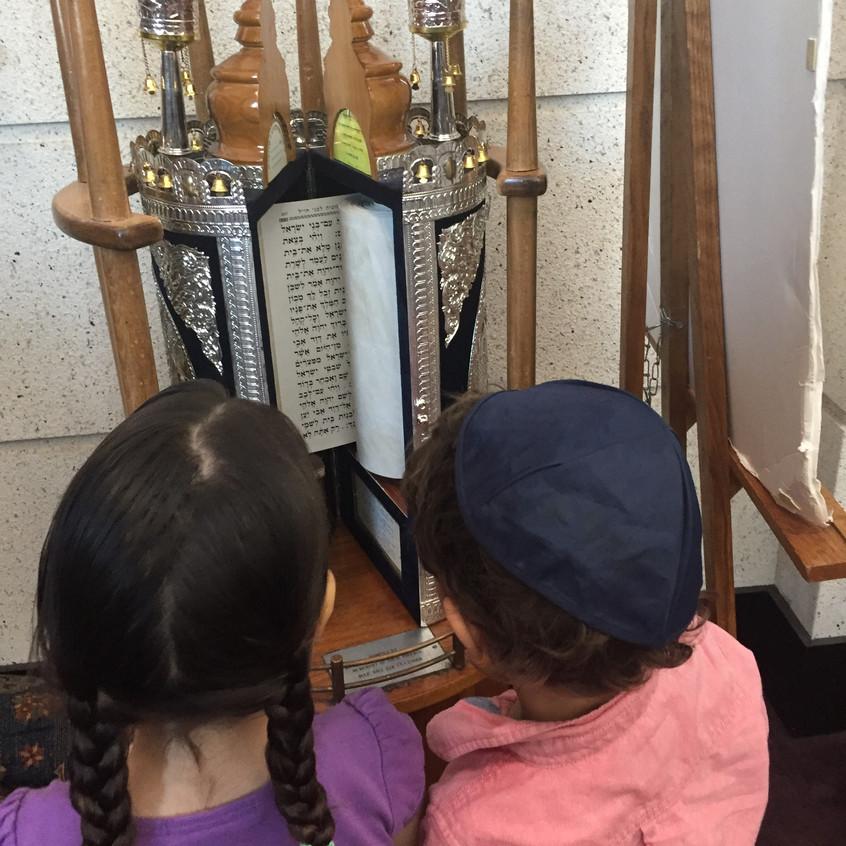 Viewing the Sephardic torah