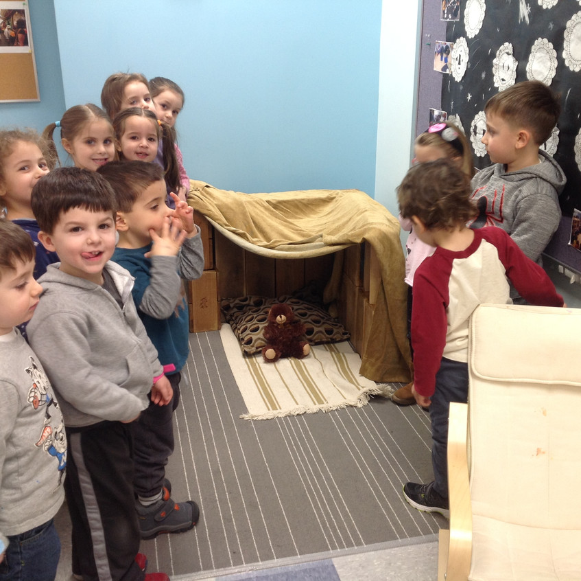 Our brown bear cave