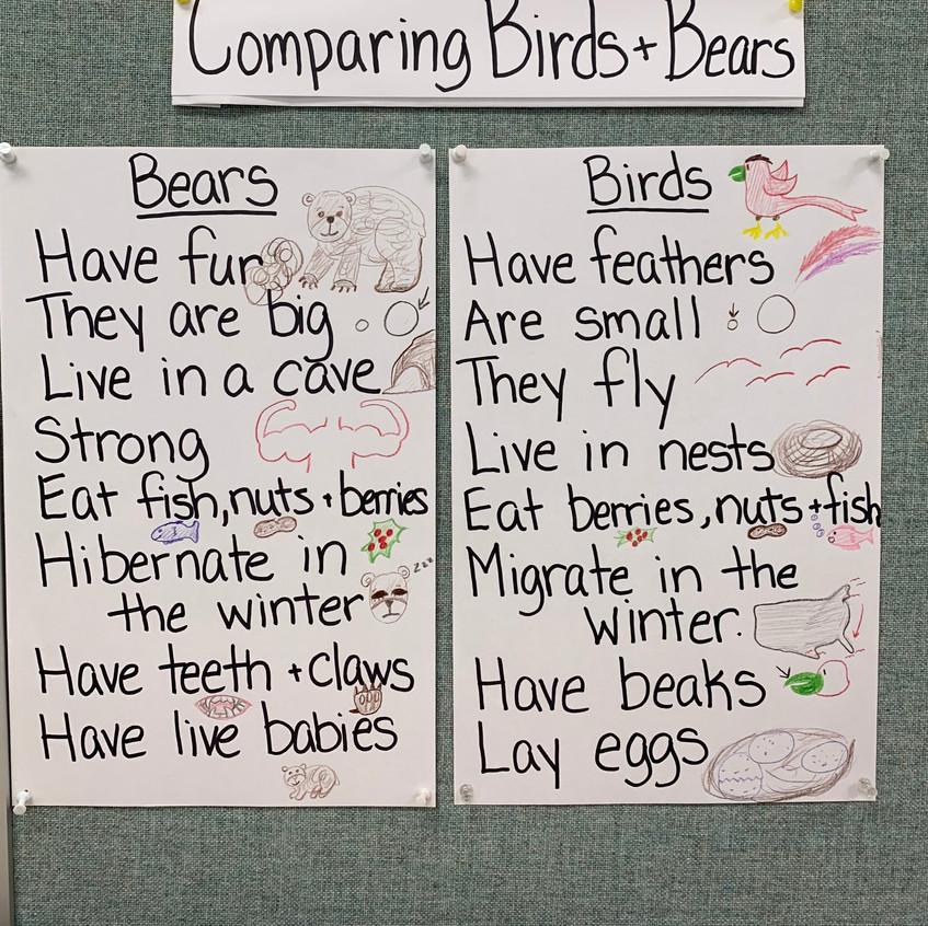 Comparing hibernating animals