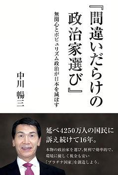 著書 間違いだらけの政治家選び.jpg