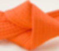 orangebälte.png