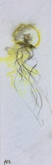 Méduses 1